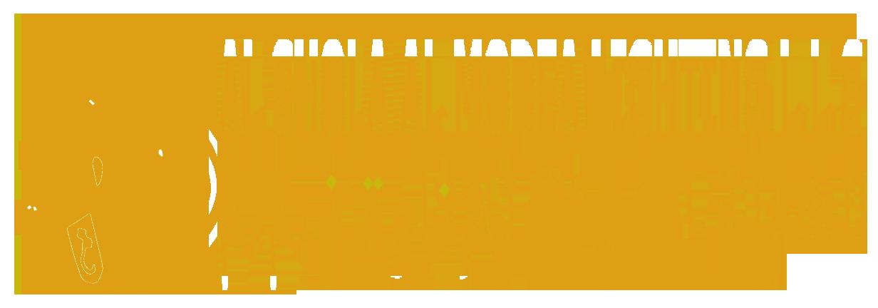 ALSHOLA ALMODEAH